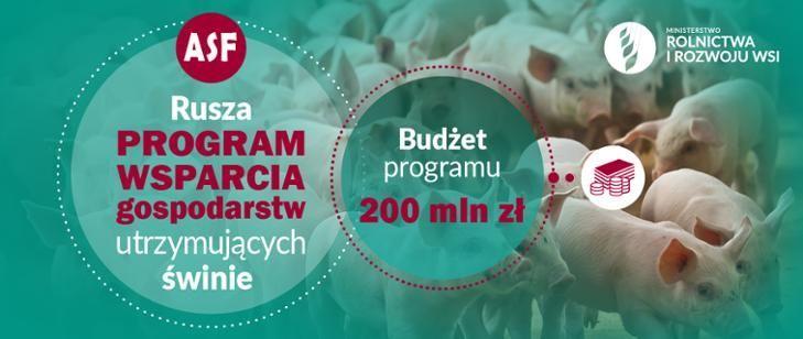 Rusza pomoc dla rolników utrzymujących świnie